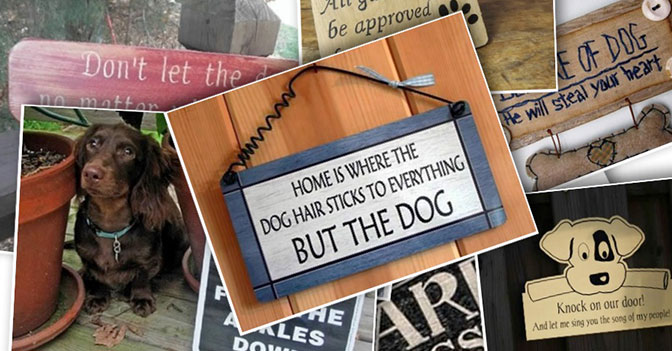 "Seven Adorable ""Beware of Dog"" Signs"